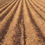 Měření ukázalo, že půda v ČR je plná pesticidů, i těch léta zakázaných. Dostávají se také do vody