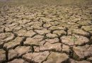 Česko zažívá 4. rok sucha. Vyschlé přehrady i rybníky jako ochrana před suchem nefungují