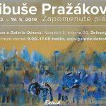 do 19. 5. • Libuše Pražáková – Zapomenuté pláně – Výstava – Galerie Detesk, Železný Brod