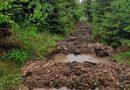 Voda pro lesy – experiment v Beskydech ukazuje, jak lze efektivně zadržet vodu v lese