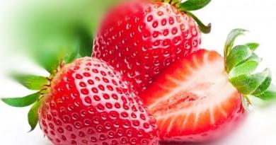 České jahody z Turnova a nový Jahodový dům v Tatobitech